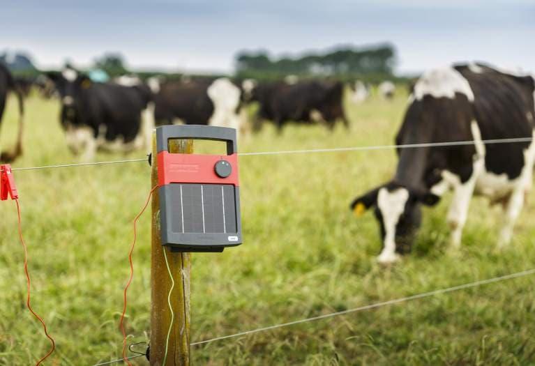 електропастири - новата ограда с ток за ферма